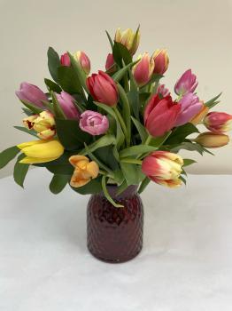Tulips_mixed