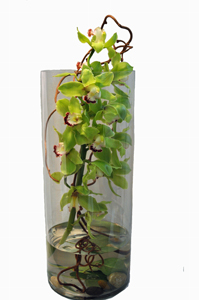 Contemporary_Cymbidium_Cylinder.jpg